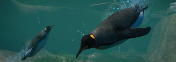 Aquatic Park llega a Planet Zoo